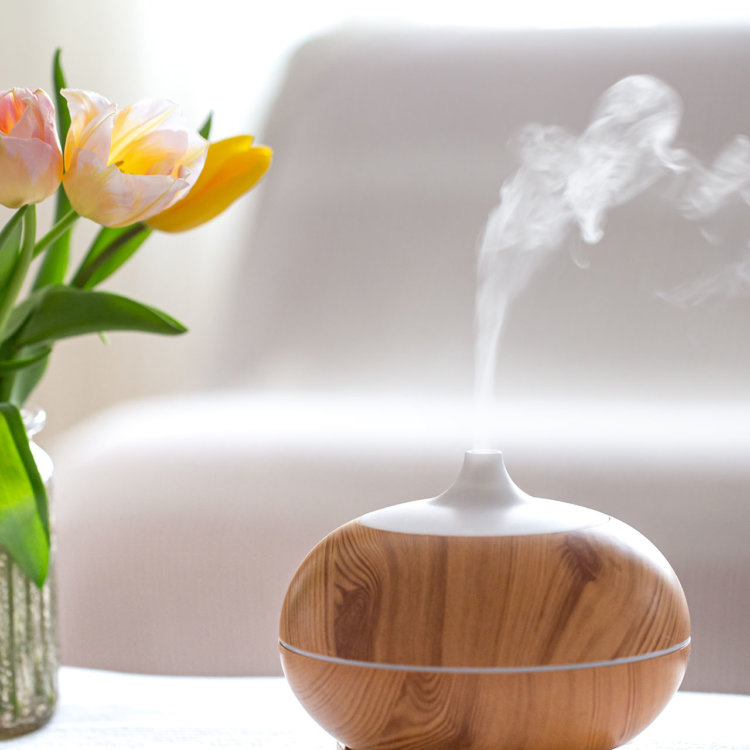 difusor de aromaterapia sob a mesa, com um vaso de flores