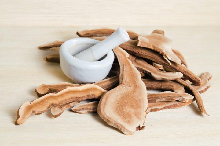 cogumelos secos e recipiente para manipulação sob mesa
